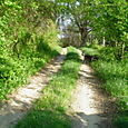 10. Tractor path in April