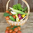 46. Basket with weekly share
