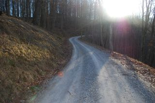 Road to cabin