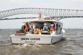 Green School students plant their oysters in Patapsco