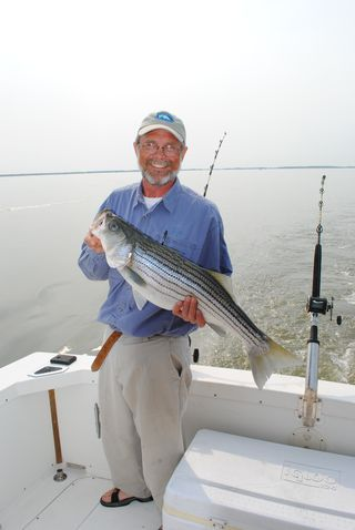 Billgoldsboroughwithstripedbass