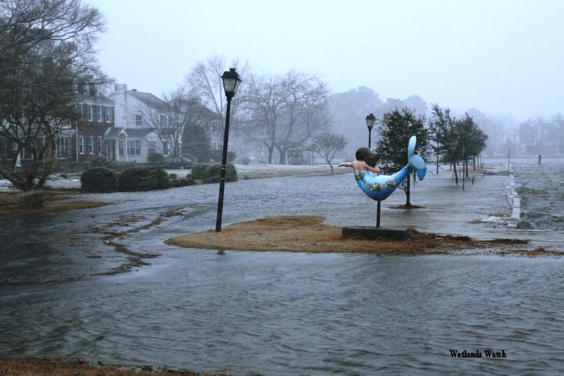 Norfolk_storm_mermaid-1
