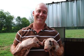 Will Morrow with pigs