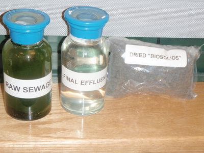 Comparison--raw sewage, final effluent, dried biosolids