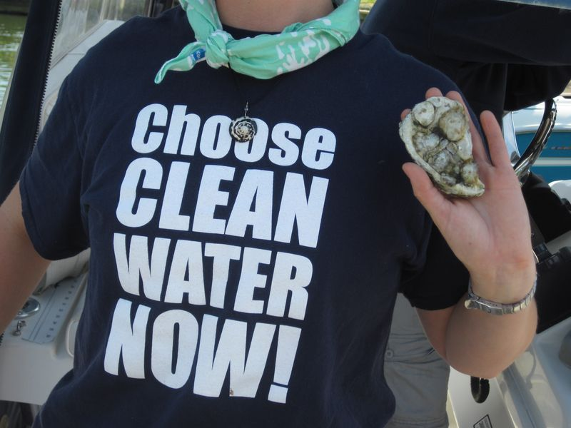 Clean Water Now With Oysters