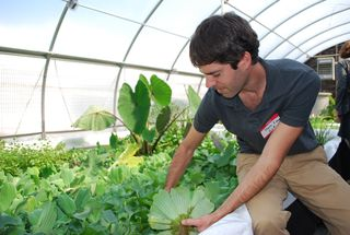 Dave Love with aquaponics