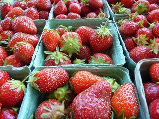Strawberries 2012 F Delventhal