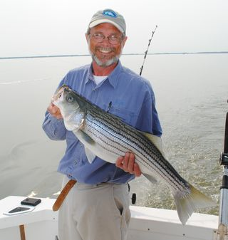 Bill Goldsborough with striped bass