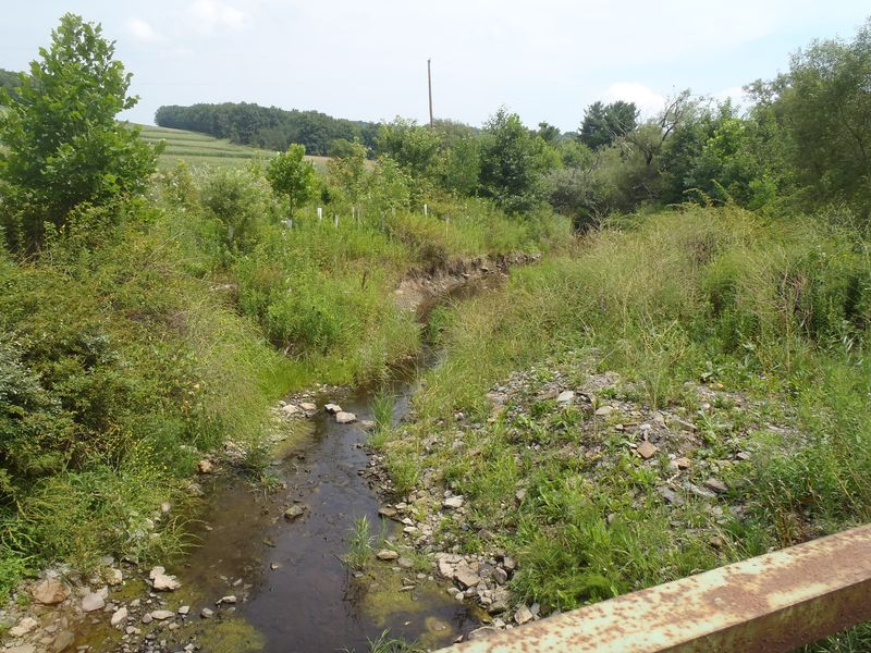 Clear Stream Through Buffer III