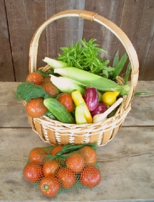Basket with share 2005