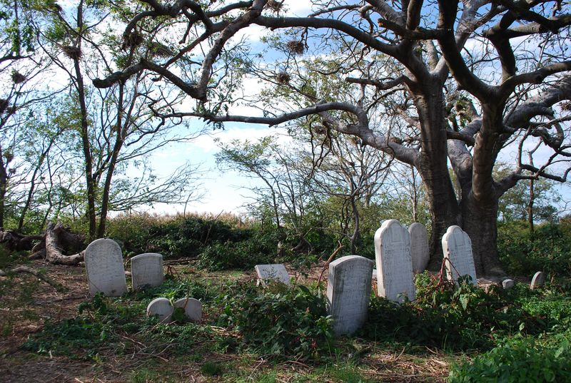 Holland Island graves