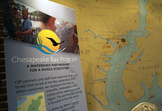 Chesapeake bay program poster