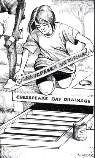 Drainage-cartoon