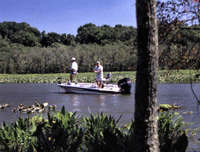 Bass fishermen in Mattawoman Creek.