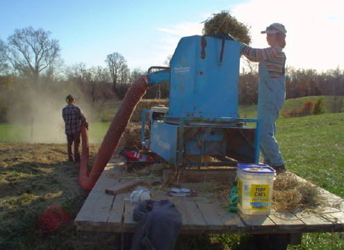 49. Carrie feeding the mulcher, Rob holding the hose